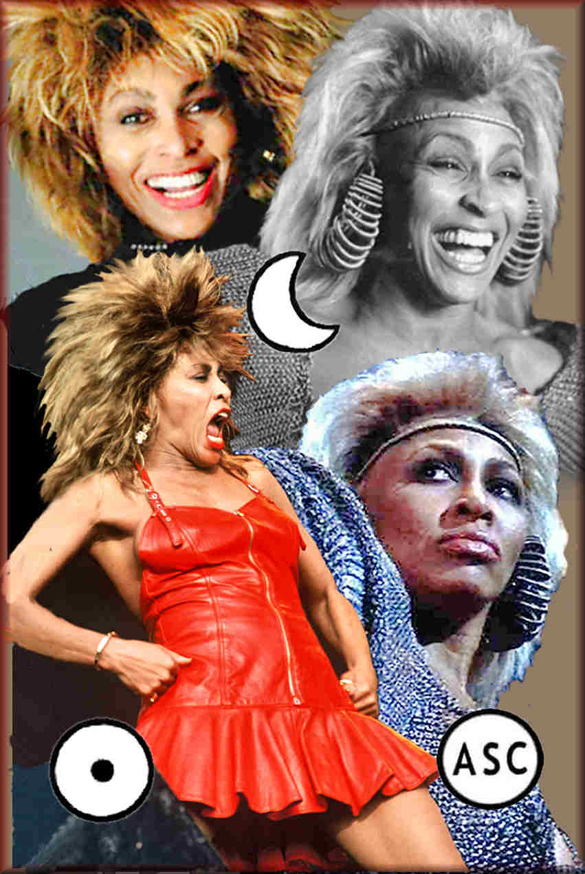 personality traits of Tina Turner